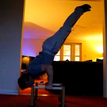 Mikey in a vertical position on pbars