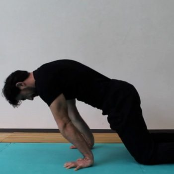 Ideal Body Position for the Planche
