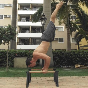 Bent Arm Stand on Parallettes