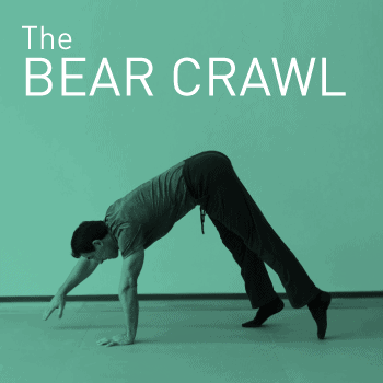 Bear crawl stretching technique