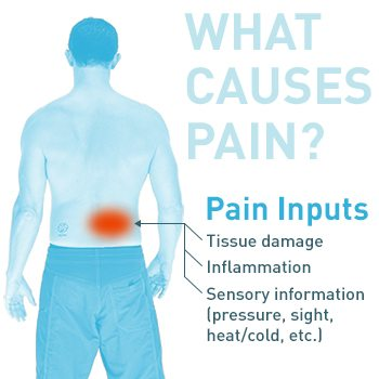 What Causes Pain?