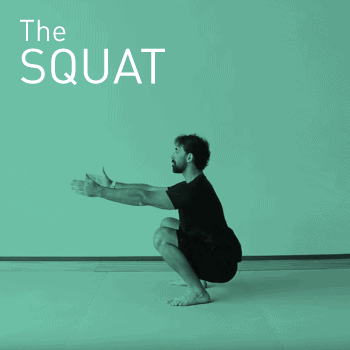 Positioning into a bodyweight squat