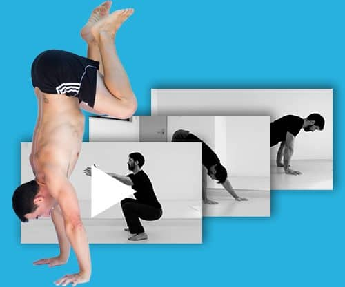 video image for the bodyweight exercise circuit