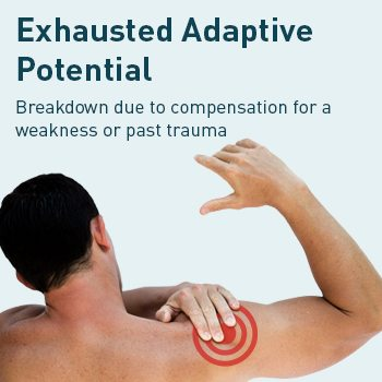 Exhausted Adaptive Potential Injury