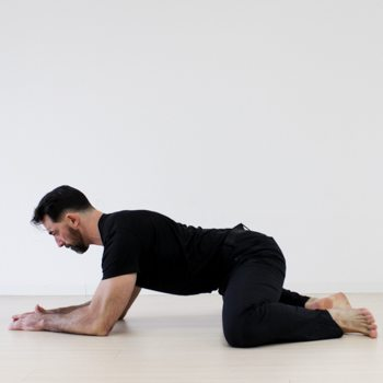 Frog Stretch for Hip Mobility