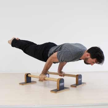 parallettes double arm lever plank