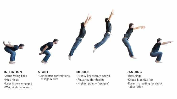 The full range of broad jumping