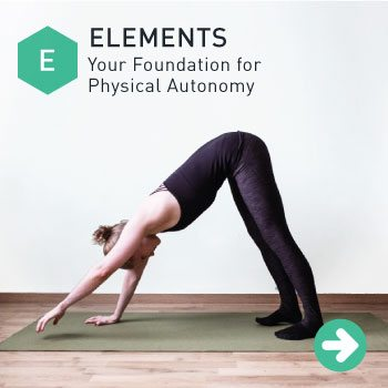 Give your back movement with Elements