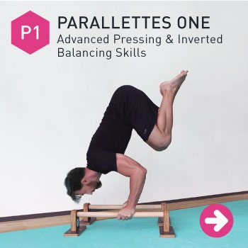 diagram parallettes bent arm stand