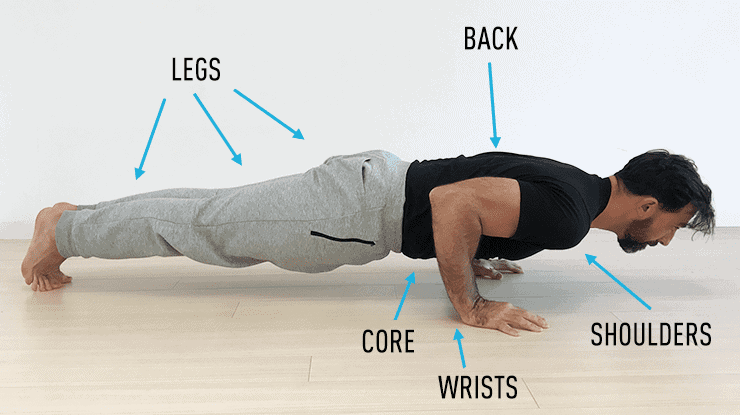 what muscles are worked in push-ups