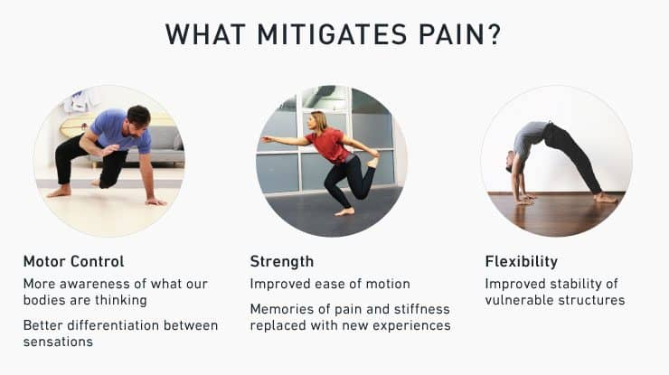 3 variables to mitigate your pain