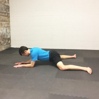 Frog Stretch for Improved Hip Mobility