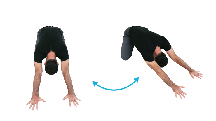 Back Stretches - Quadruped Sidebend