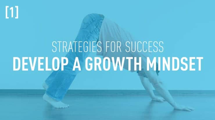 success strategy develop a growth mindset