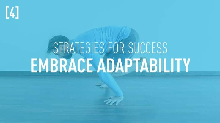 success strategies embrace adaptability