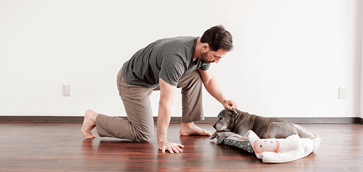 bending down to pet dog hip problems