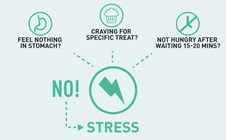 gmb-fitness-stress-eating-stress-vs-hunger-stress
