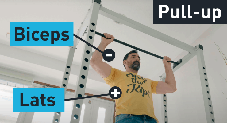 pull-up muscles being worked